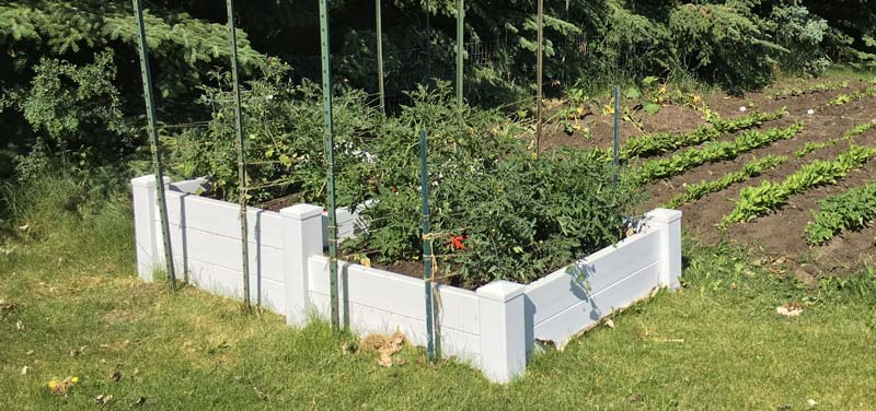 Why you should consider raised bed gardening